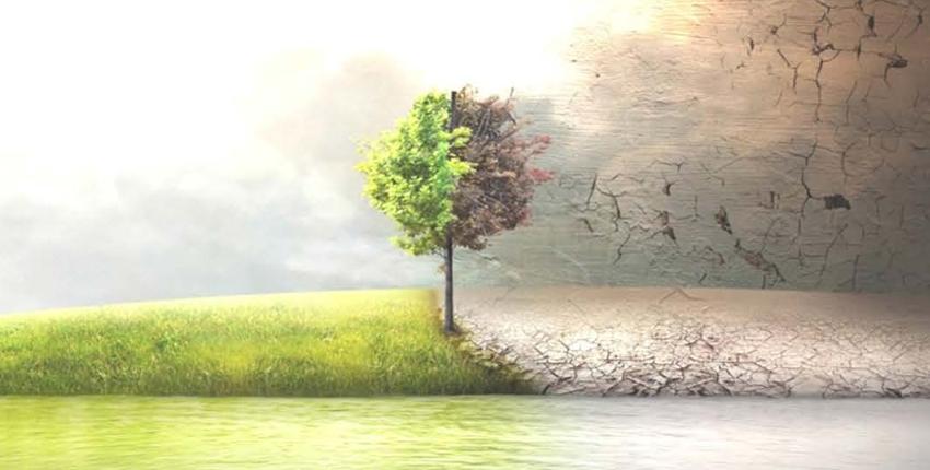 ArkCiak: l'ambiente non è solo un luogo della mente